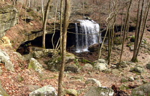 Big Laurel Falls by Chuck Sutherland
